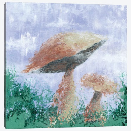 Mushroom Mist Canvas Print #EME40} by Emily Magone Art Print