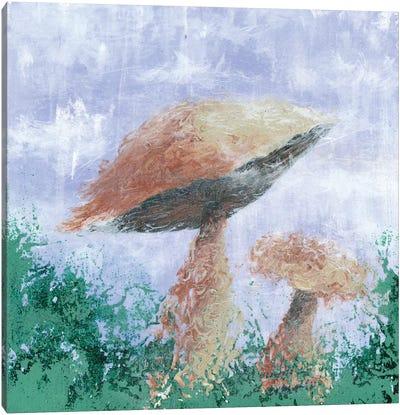 Mushroom Mist Canvas Print #EME40