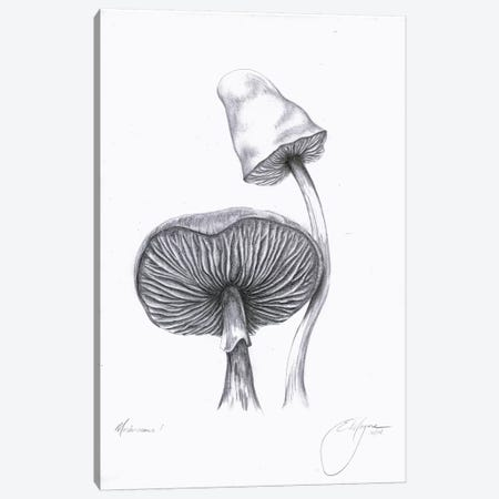Mushrooms One Canvas Print #EME41} by Emily Magone Canvas Print