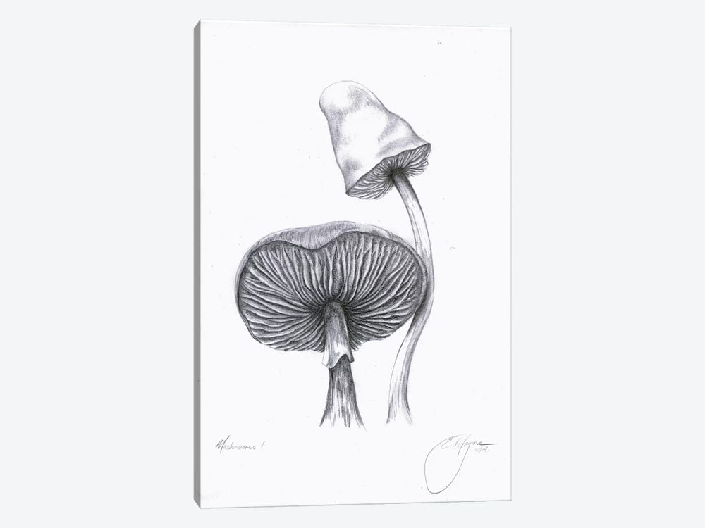 Mushrooms One by Emily Magone 1-piece Canvas Wall Art