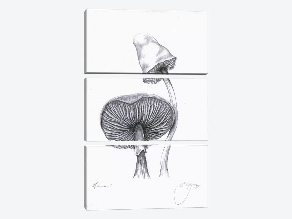 Mushrooms One by Emily Magone 3-piece Canvas Artwork