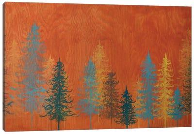 Orange Trees Canvas Print #EME50