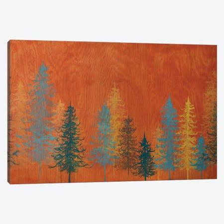 Orange Trees Canvas Print #EME50} by Emily Magone Canvas Art
