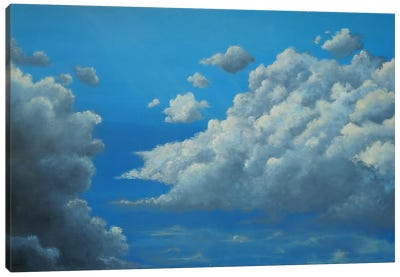 Flight Canvas Art Print