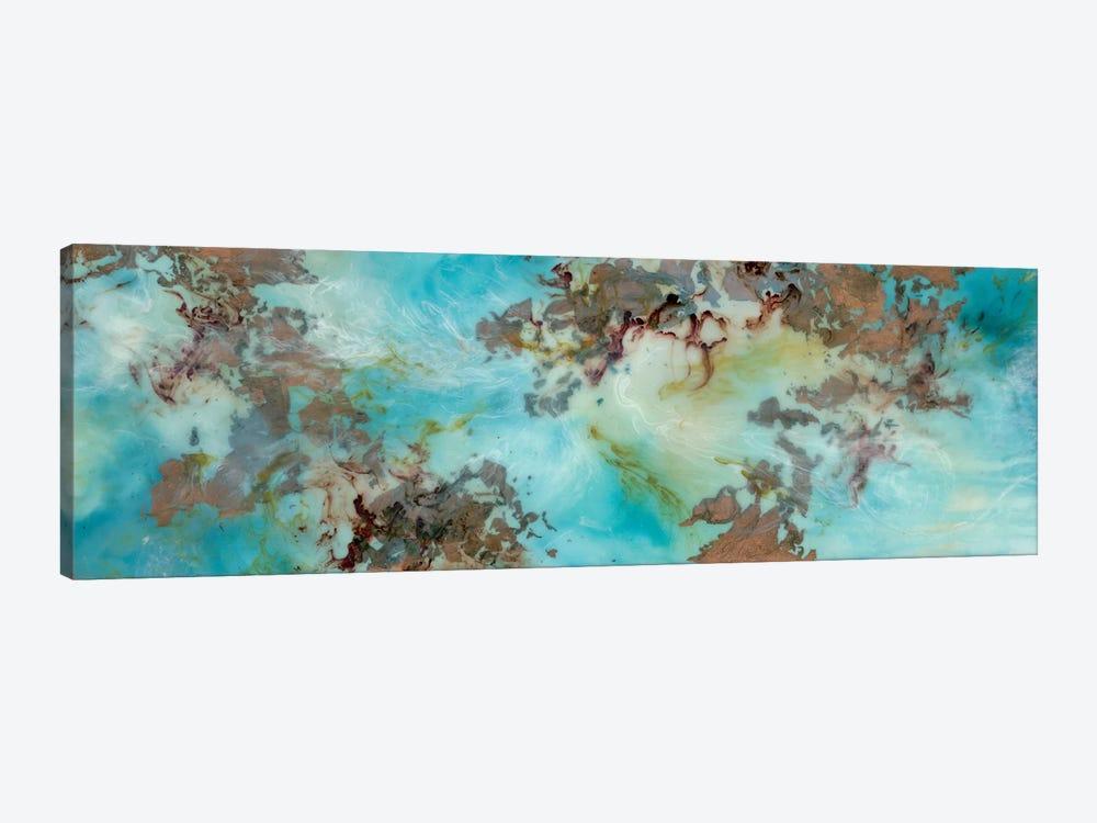 Burst by Emily Magone 1-piece Canvas Artwork