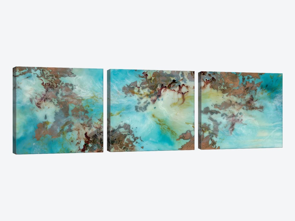 Burst by Emily Magone 3-piece Canvas Wall Art