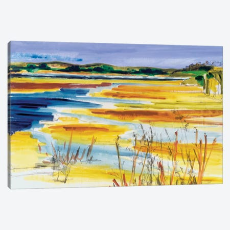 Bright Marsh I Canvas Print #EMF14} by Erin McGee Ferrell Canvas Artwork