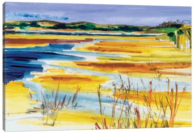 Bright Marsh I Canvas Art Print