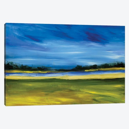 Bright Marsh III Canvas Print #EMF16} by Erin McGee Ferrell Canvas Wall Art
