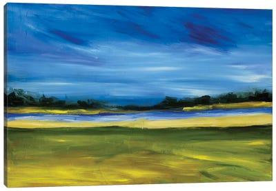 Bright Marsh III Canvas Art Print