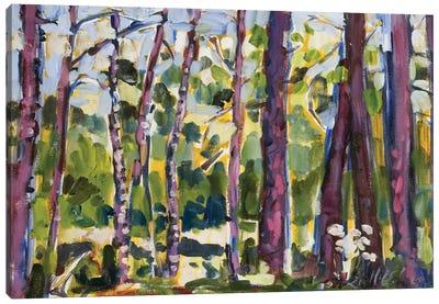 Brushy Treeline II Canvas Art Print