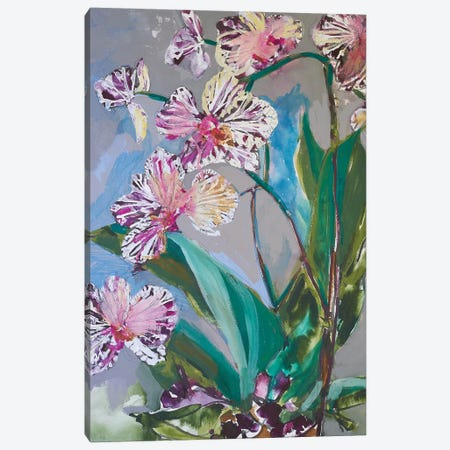 Maine Spring Flowers I Canvas Print #EMF65} by Erin McGee Ferrell Canvas Art Print