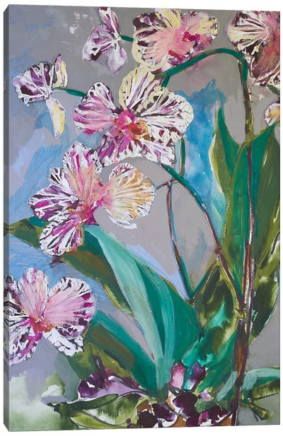 Maine Spring Flowers I Canvas Art Print
