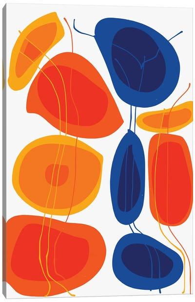 Orange And Blue Flowers Canvas Art Print