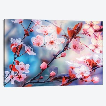 Sakura Canvas Print #EMN254} by Manjik Pictures Canvas Wall Art
