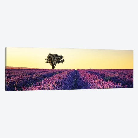 Sunset In Provence Canvas Print #EMN300} by Manjik Pictures Canvas Art Print