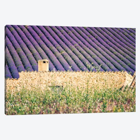 The House In The Lavenders Canvas Print #EMN518} by Manjik Pictures Canvas Artwork