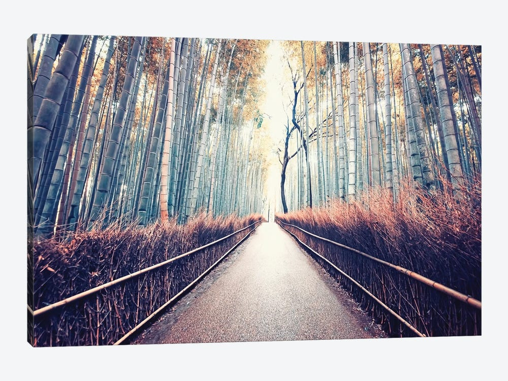 Bamboo Forest by Manjik Pictures 1-piece Canvas Art
