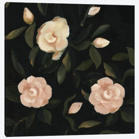 Evening Gardenias II Canvas Print #EMS10} by Emma Scarvey Canvas Art