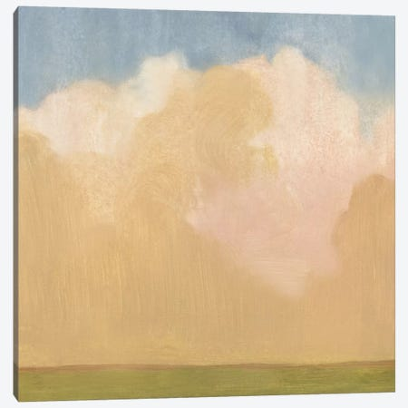 Evening Plane I Canvas Print #EMS11} by Emma Scarvey Canvas Artwork