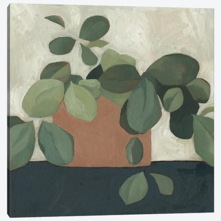 Jade Hoya I Canvas Print #EMS120} by Emma Scarvey Art Print