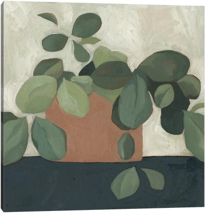Jade Hoya I Canvas Art Print