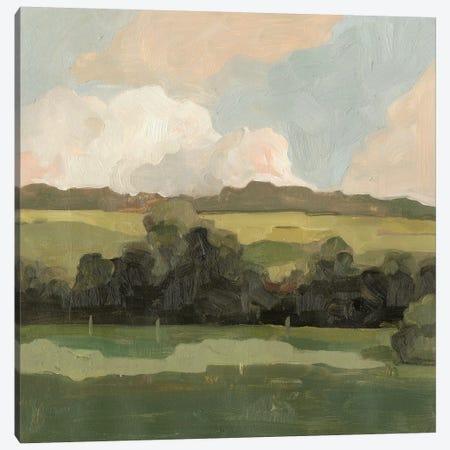 Ochre Evening II Canvas Print #EMS123} by Emma Scarvey Art Print