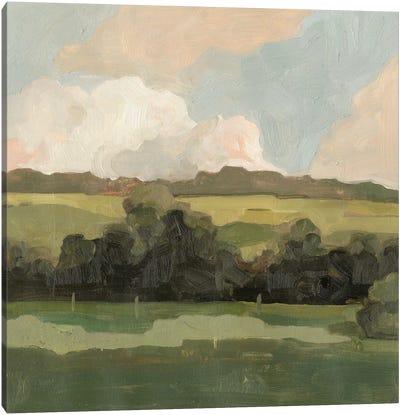 Ochre Evening II Canvas Art Print