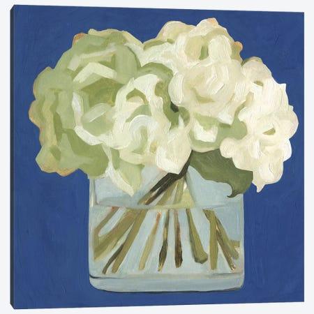 White Hydrangeas II Canvas Print #EMS140} by Emma Scarvey Canvas Print