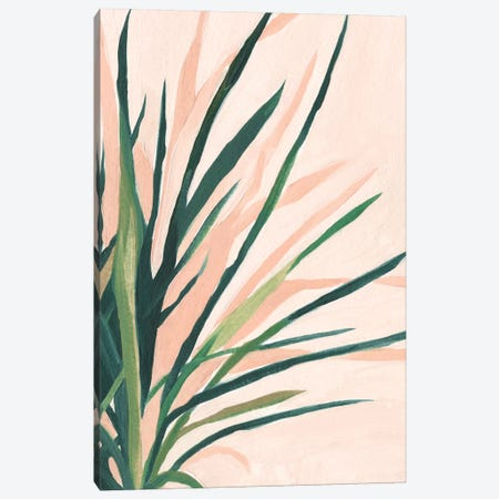 Frond Impression II Canvas Print #EMS147} by Emma Scarvey Canvas Wall Art