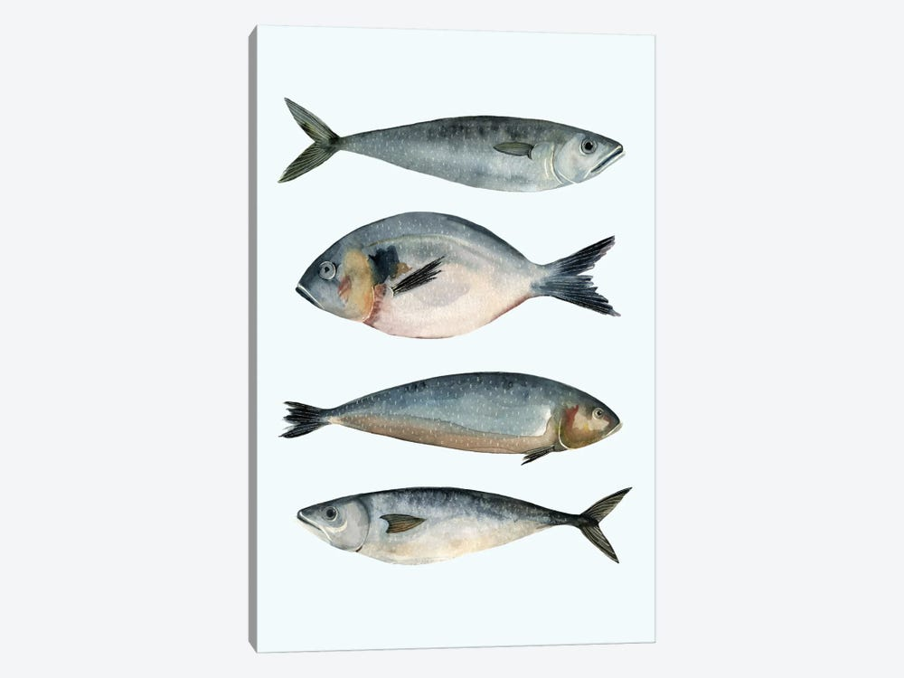 Four Fish II by Emma Scarvey 1-piece Canvas Art Print