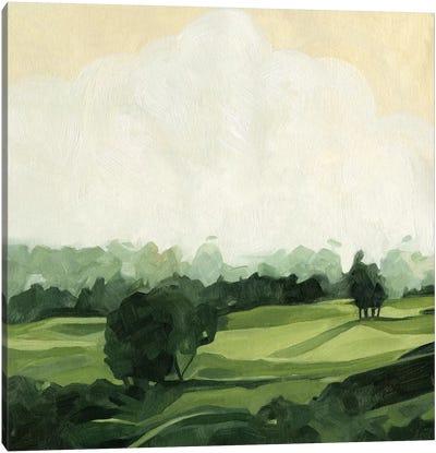 Olive Afternoon I Canvas Art Print
