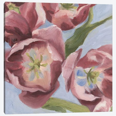 Mauve Tulips I Canvas Print #EMS15} by Emma Scarvey Art Print