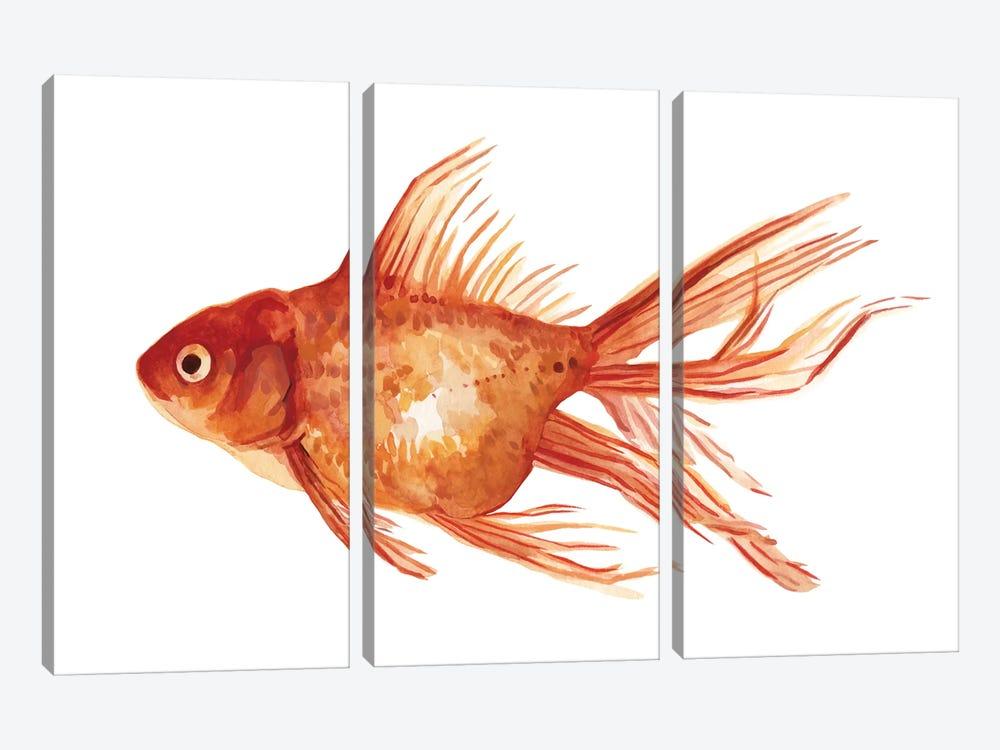 Ornamental Goldfish I by Emma Scarvey 3-piece Canvas Print