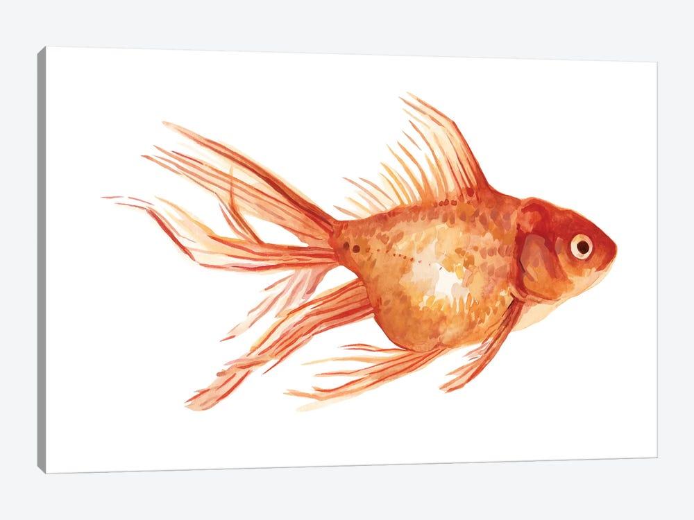 Ornamental Goldfish II by Emma Scarvey 1-piece Canvas Wall Art