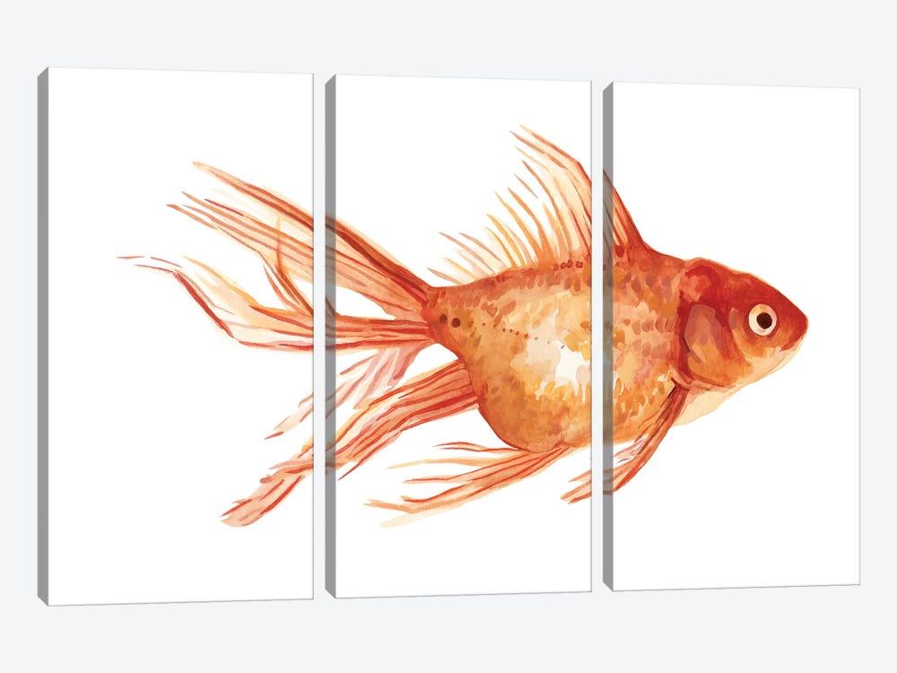 Ornamental Goldfish II by Emma Scarvey 3-piece Canvas Artwork