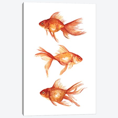 Ornamental Goldfish III Canvas Print #EMS162} by Emma Scarvey Canvas Print