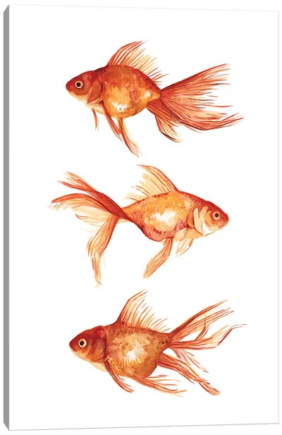 Ornamental Goldfish III Canvas Art Print