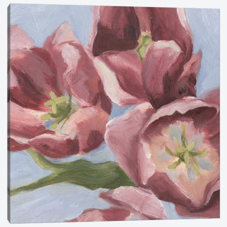 Mauve Tulips II Canvas Print #EMS16} by Emma Scarvey Canvas Art Print
