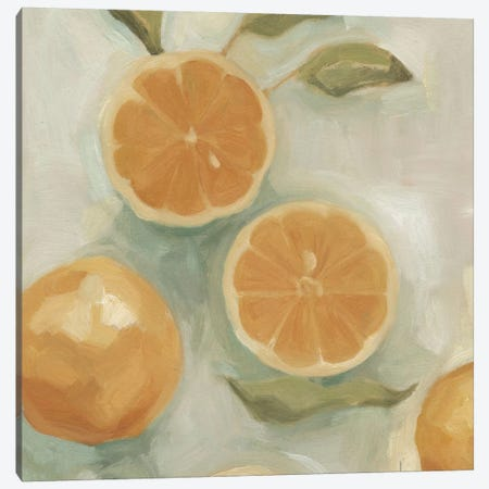 Citrus Study In Oil I Canvas Print #EMS1} by Emma Scarvey Canvas Wall Art
