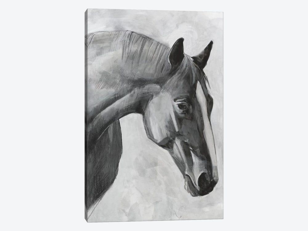 Cavallo I by Emma Scarvey 1-piece Canvas Art Print