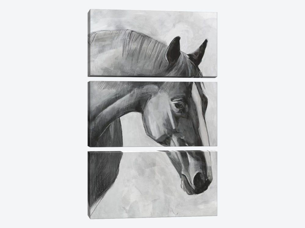 Cavallo I by Emma Scarvey 3-piece Canvas Print