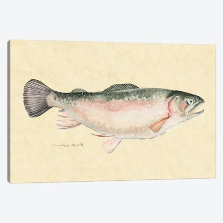 Catch of the Day III Canvas Print #EMS218} by Emma Scarvey Art Print