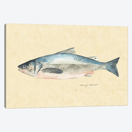 Catch of the Day IV Canvas Print #EMS219} by Emma Scarvey Art Print