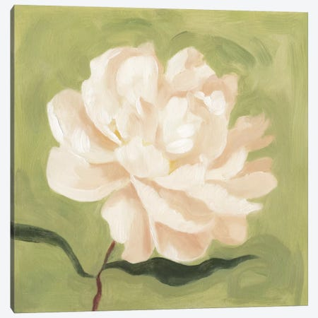 Peony On Olive I Canvas Print #EMS21} by Emma Scarvey Art Print
