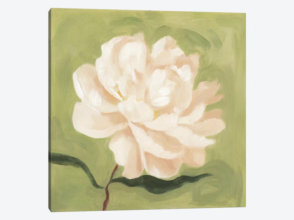Peony On Olive I by Emma Scarvey 1-piece Canvas Print