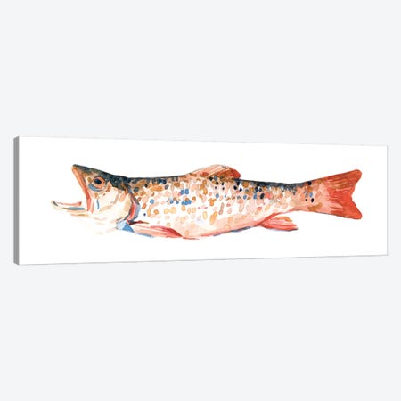 Freckled Trout I Canvas Print #EMS226} by Emma Scarvey Canvas Print