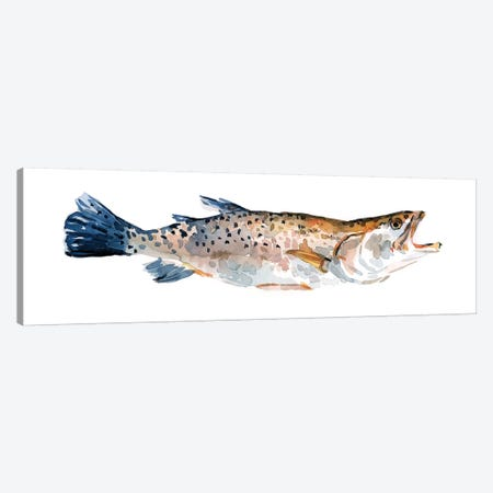 Freckled Trout II Canvas Print #EMS227} by Emma Scarvey Art Print