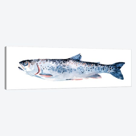 Freckled Trout III 3-Piece Canvas #EMS228} by Emma Scarvey Canvas Wall Art