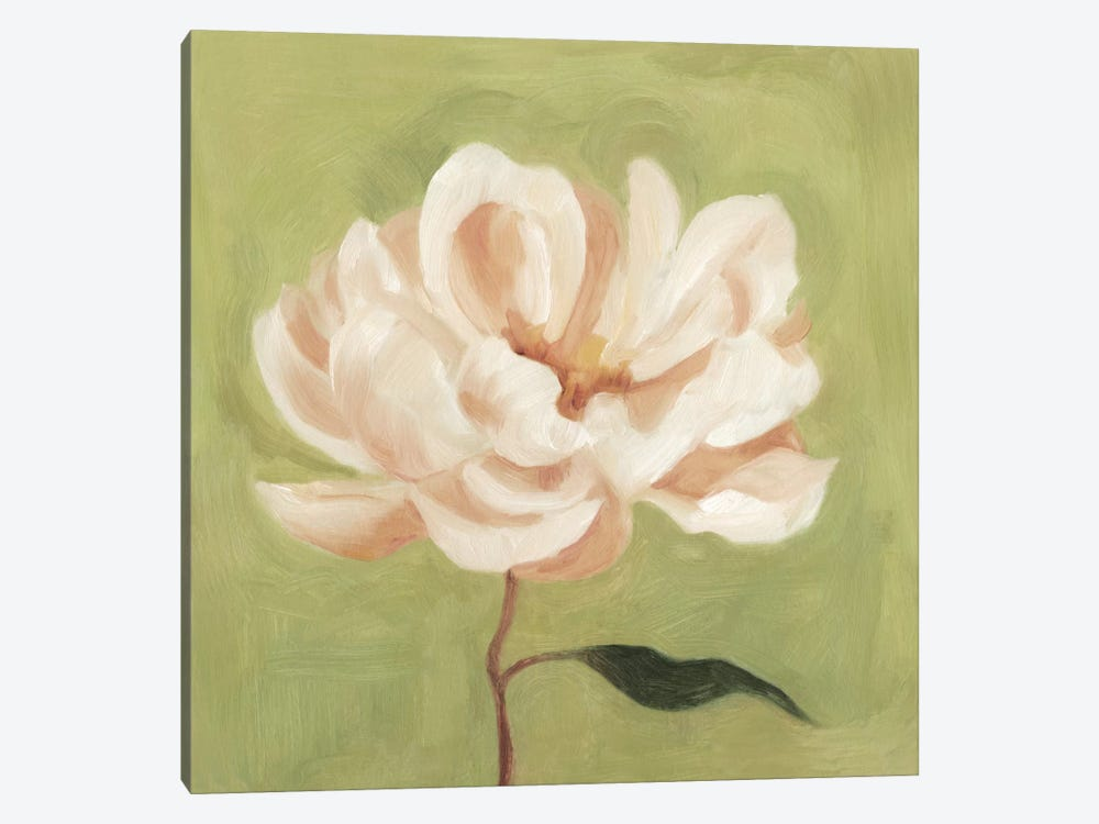 Peony On Olive II by Emma Scarvey 1-piece Canvas Wall Art